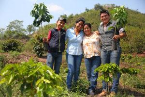 starbucks-chiapas-mexico-farm