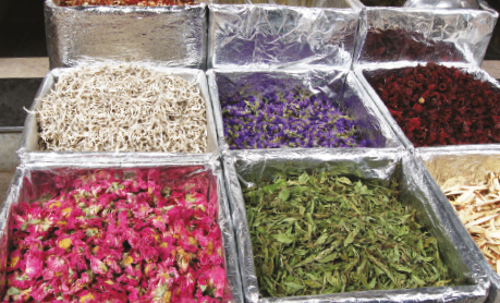 Tea in South America: Key Markets and Major Regional Trends
