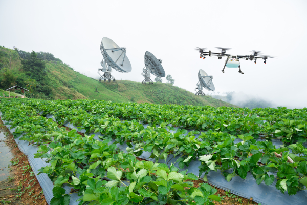 Is AI the Missing Link in Sustainability Efforts?