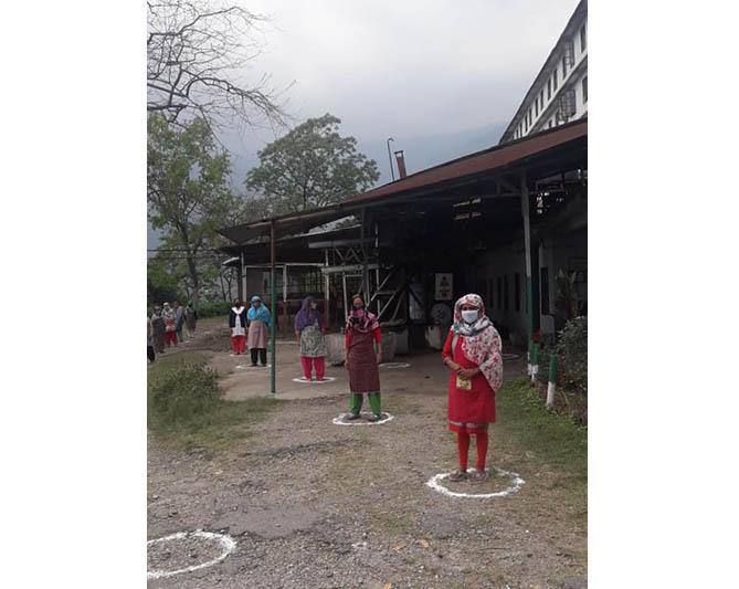 Cautious re-opening of Darjeeling Tea Estates after lockdown